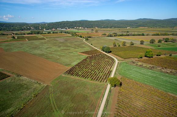 Vignes en automne autour de Saint-Maximin (prise de vue par drone)