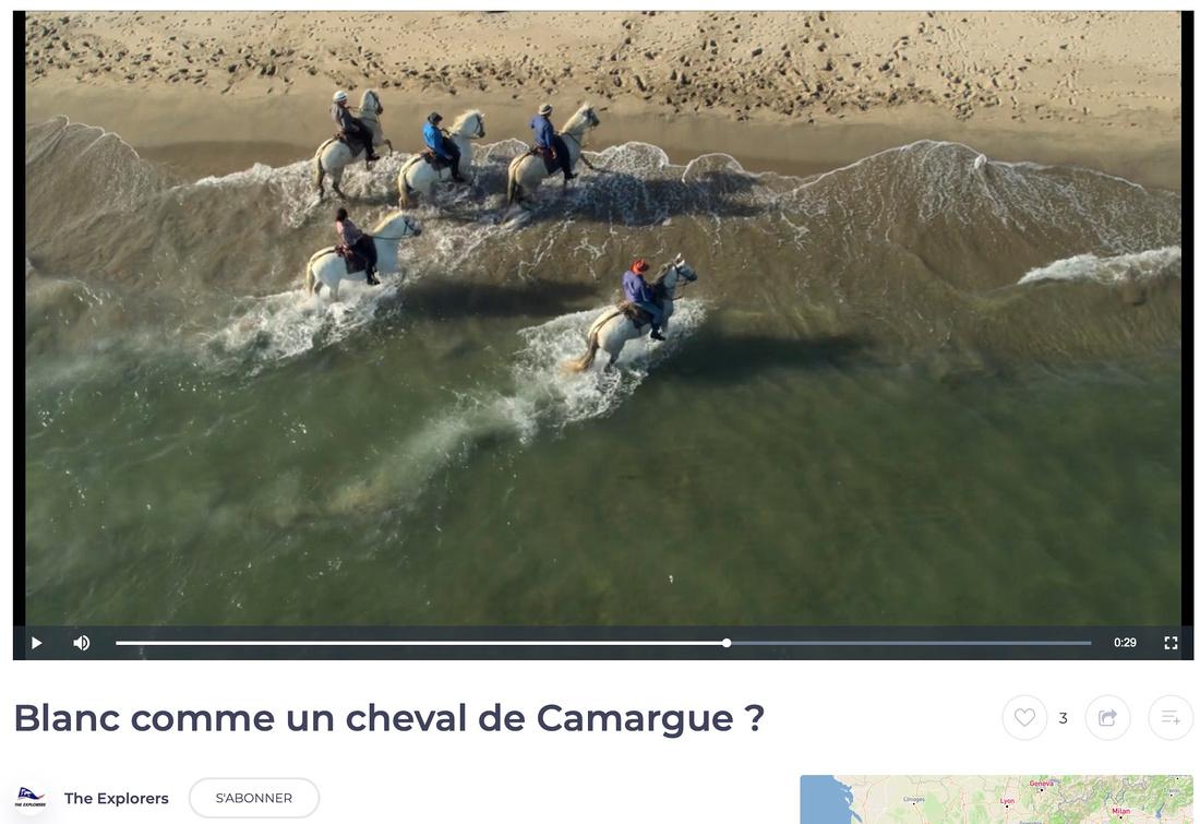 Clip Camargue - Drone plage de piemanson, bouches du rhône