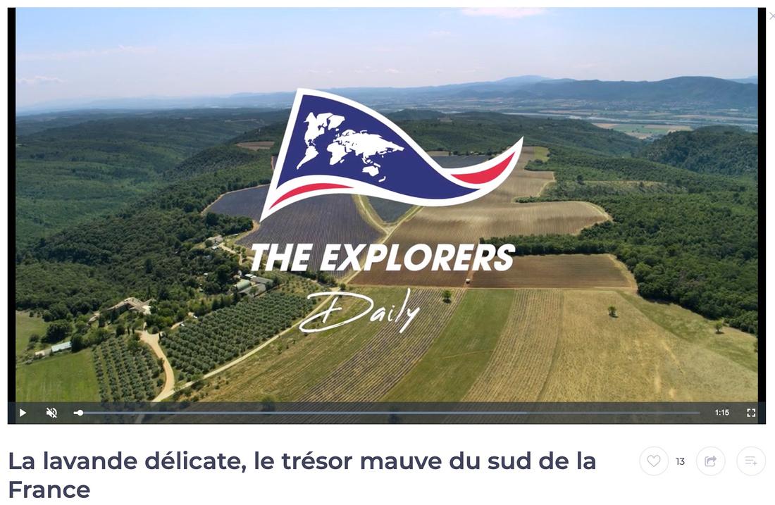 Clip Lavandes-Valensole par drone Vaucluse